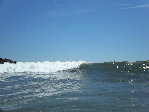 ニューヨークでサーフィン