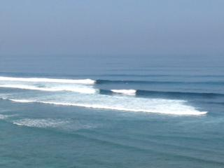 今年は風も安定していてサイズも有り良い波でした!
