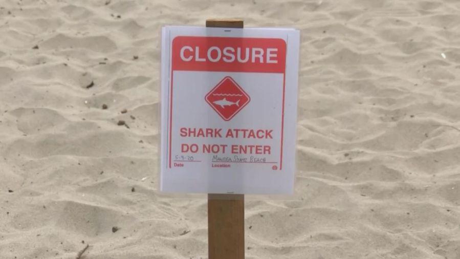 Santa-Cruz-Shark-Attack